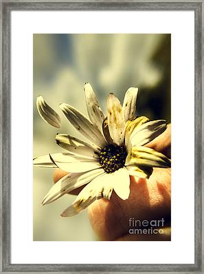 Letting Go Framed Print by Jorgo Photography - Wall Art Gallery