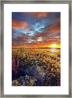 Letting It Be Framed Print by Phil Koch