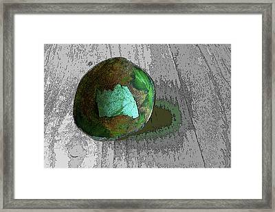 Lettuce In Avocado Skin Framed Print by Sandra Church