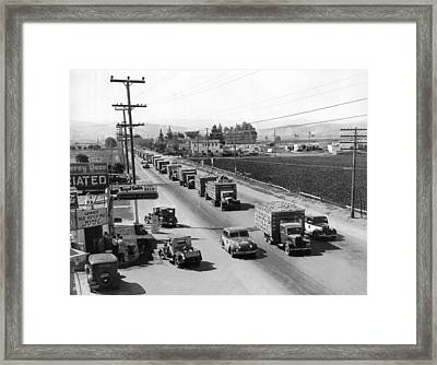 Lettuce Truck Armed Escorts Framed Print by Underwood Archives
