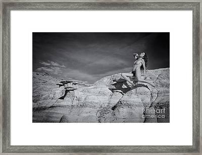 Levitation Framed Print by Inge Johnsson