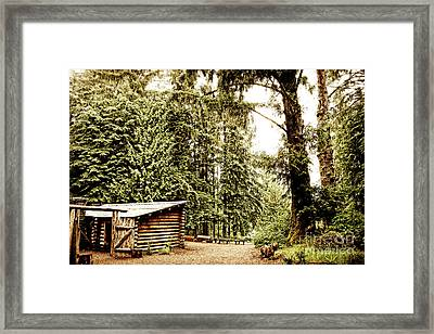 Lewis And Clark's Fort Clatsop In The Old Growth Forest Framed Print by Lincoln Rogers