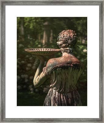 Lexington Bird Lady Framed Print