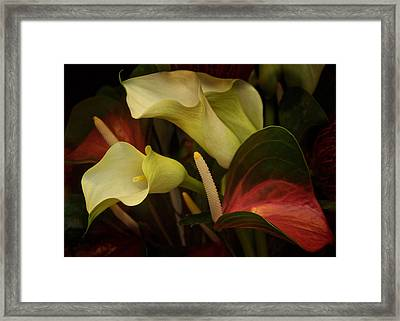 Li Ly Land Framed Print