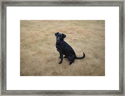 Libby Framed Print