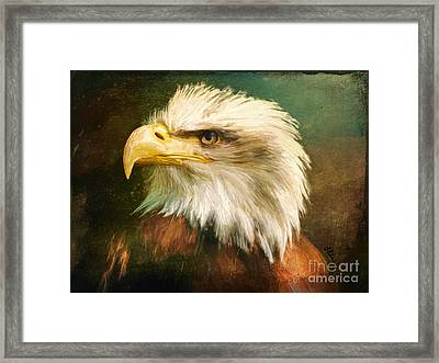 Liberty And Justice Framed Print by Tina LeCour