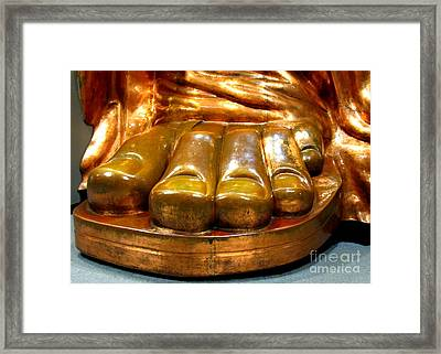 Liberty Toes Framed Print by Randall Weidner