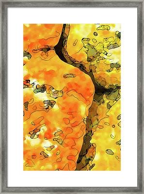 Lichen Abstract Framed Print
