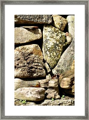 Lichen And Moss Framed Print by Jan Amiss Photography