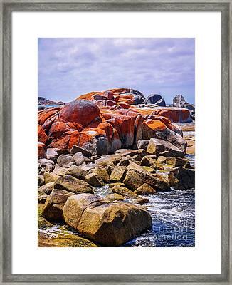 Lichen Covered Rocks Framed Print