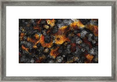 Lichen Framed Print