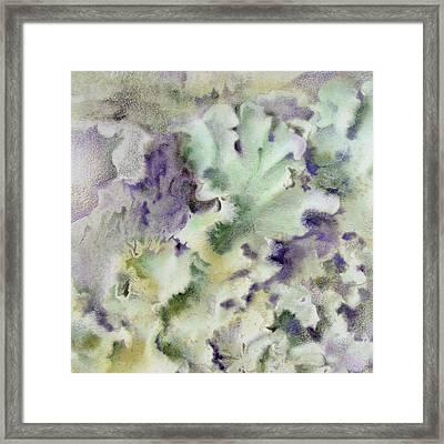 Lichen Framed Print by Mindy Lighthipe