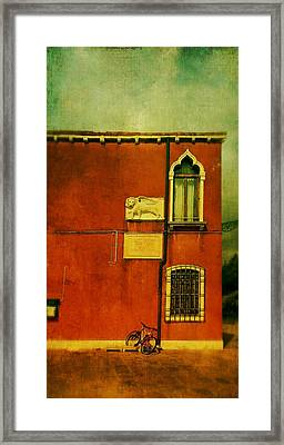 Framed Print featuring the photograph Lido Lion by Anne Kotan