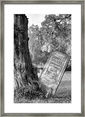 Life After Death Framed Print by Richard Rizzo