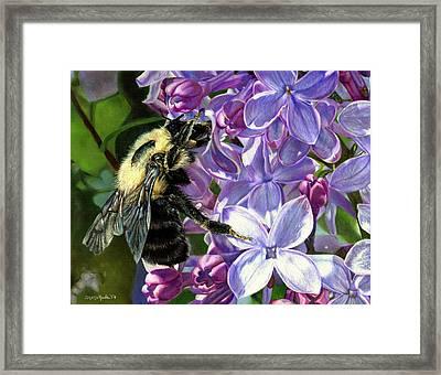 Life Among The Lilacs Framed Print