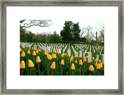 Life And Death At Arlington Framed Print