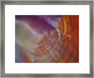 Life At Sea Framed Print by Rona Black
