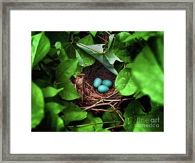 Life At The End Of The Tunnel Framed Print