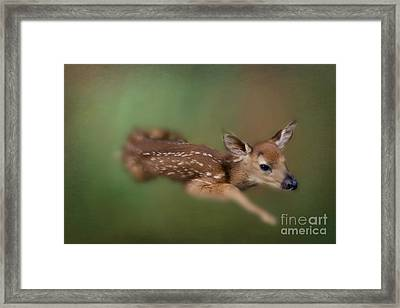 Framed Print featuring the photograph Life Begins by Brenda Bostic