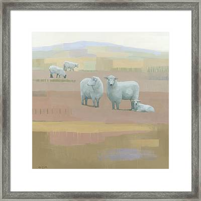 Life Between Seams Framed Print by Steve Mitchell