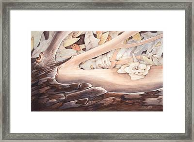 Life From Decay Framed Print