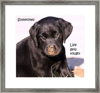 Life Gets Tough Framed Print