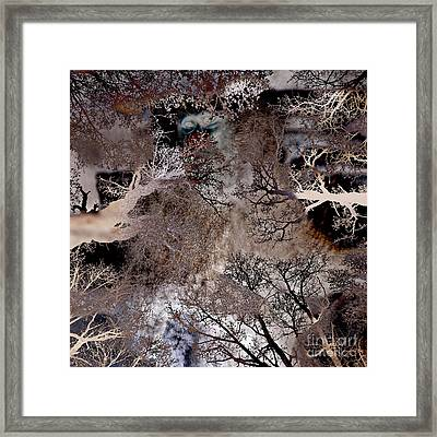 Life In A Bush Of Ghosts Framed Print