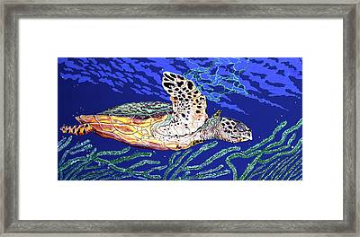 Life In The Slow Lane Framed Print