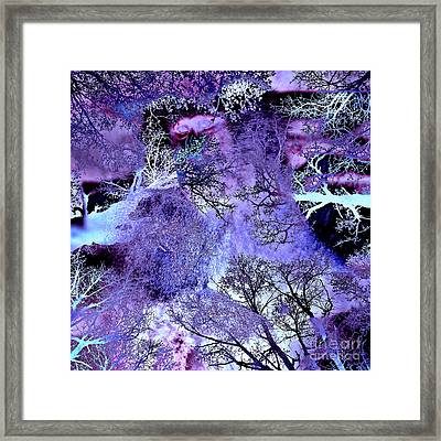 Life In The Ultra Violet Bush Of Ghosts  Framed Print