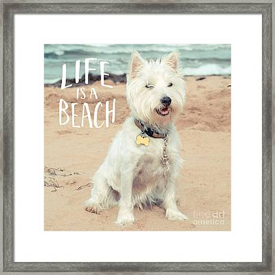 Life Is A Beach Dog Square Framed Print by Edward Fielding