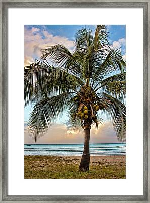 Life Is A Beach Framed Print by Marcia Colelli