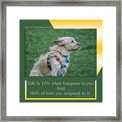 Life Is A Warm Summers Breeze Framed Print