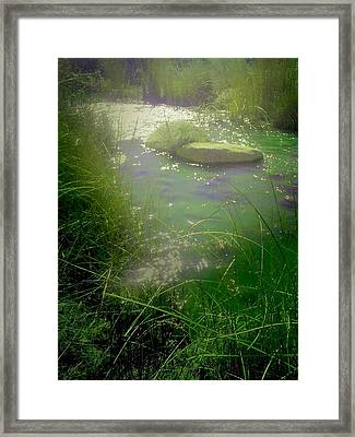 Life Is But A Dream Framed Print by MeMi Renee