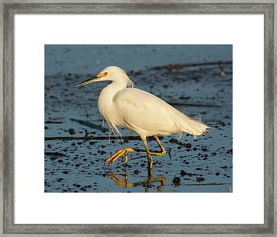 Life Is Messy Framed Print