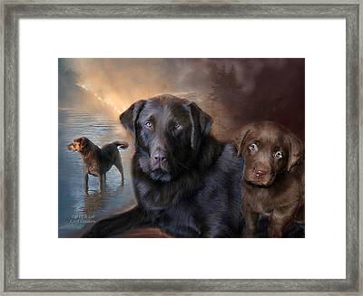 Life Of A Lab Framed Print