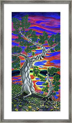 Life Of Trees Framed Print