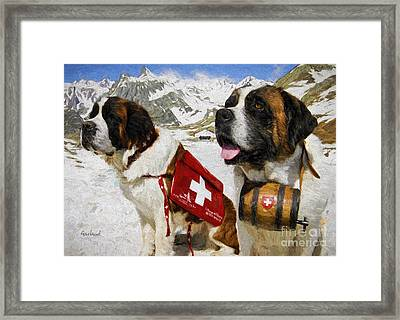 Life Saving Saint Benards Framed Print by Garland Johnson