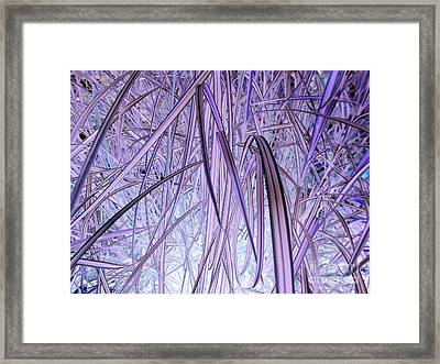 Lifeforce Framed Print by Rick Maxwell