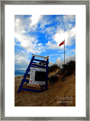 Lifeguard Aol Framed Print by Linda Mesibov