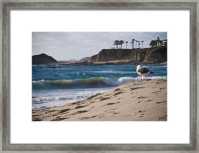 Lifeguard Framed Print by Carl Jackson