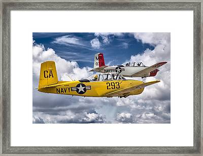 Life's A Beech .. Then You Fly Framed Print