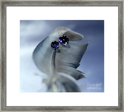 Life's Little Mysteries Framed Print