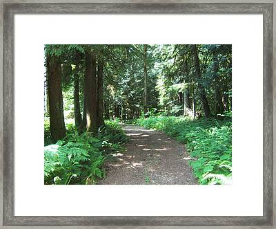 Life's Turns Framed Print by Ken Day
