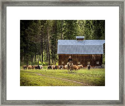 Framed Print featuring the photograph Lifestyle by Mary Hone