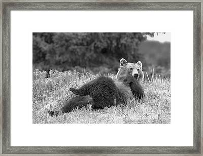 Lifting My Legs Black And White Framed Print