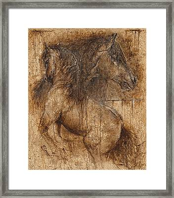 Lifting My Spirit- Spirit Of Life Framed Print by Paula Collewijn -  The Art of Horses