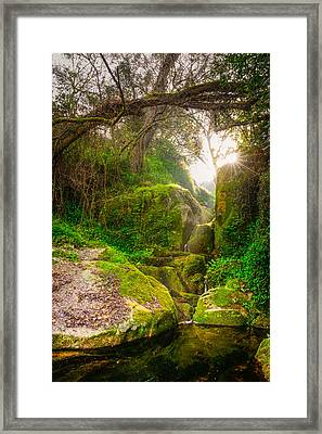 Light And Magic II Framed Print by Marco Oliveira