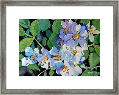 Light And Shadow - White Blossoms Framed Print by Teresa Boston