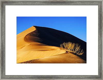 Light And Shadow At Bruneau Dunes State Park In Idaho Framed Print