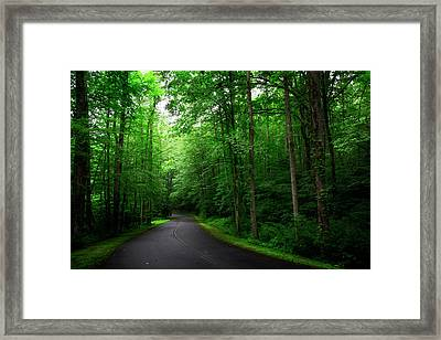 Light And Shadow On A Mountain Road Framed Print